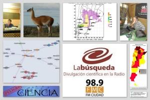 Vuelve La Busqueda 2013